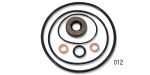 Danchuk 1955-1957 Chevy Power Steering Pump Rebuild Kit